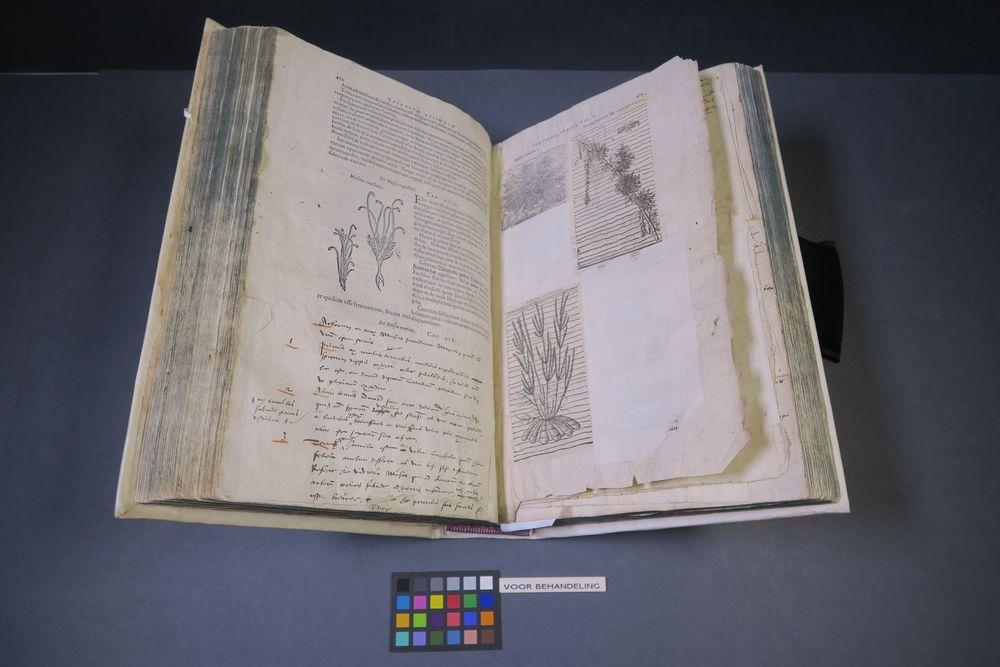 Restauratie kruidboek Dodonaeus van de Enkhuizer Librije